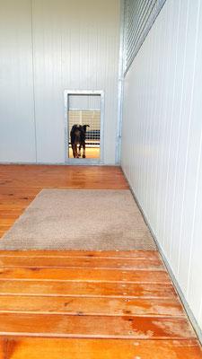 Box in legno di larice, sollevato da terra per una maggiore areazione e igiene