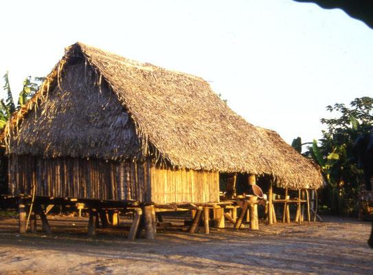 eine Shipibo-Hütte