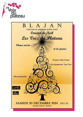 concert 2014 Blajan