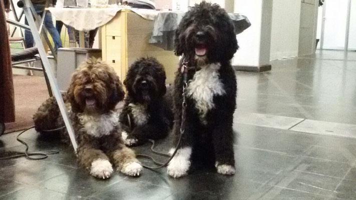 Familienausflug - Irma, Geysa und Pepe