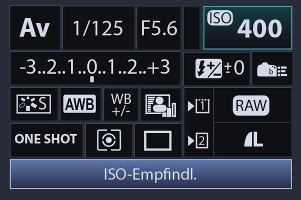 Display Menü einer Spiegelreflexkamera
