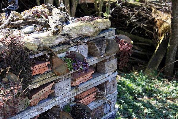 eingewachsenes Paletten Insektenhotel