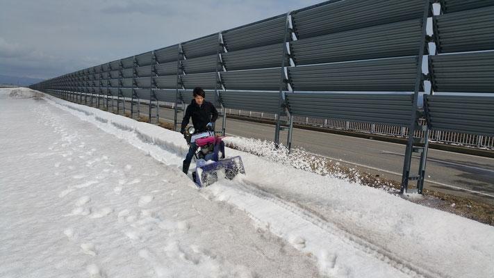 春の雪解け時期【道路沿いの雪が早く溶けるよう溝堀】