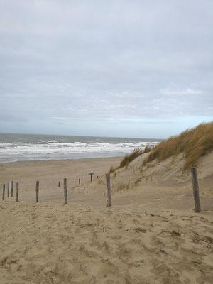 Jahreswechsel an der holländischen Nordseeküste
