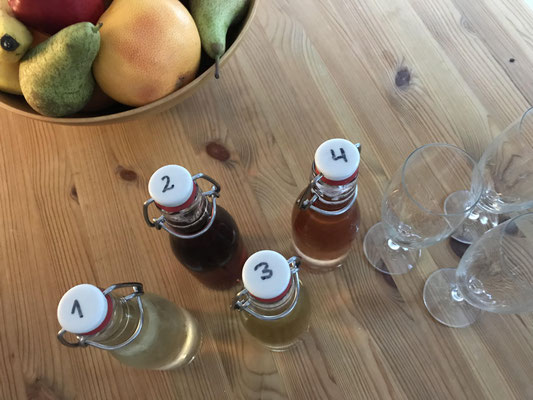 Vier Flaschen Secco zur Probe und Auswahl des Seccos von Fräulein GLYCK