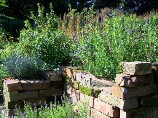 Experimentiergarten am ÖBZ