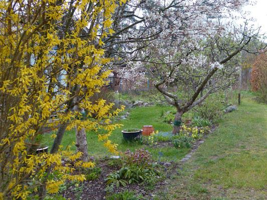 """Blick in die Kleingartenkolonie """"Naturnahe Gärten Niederheideweg"""" in Berlin-Spandau"""