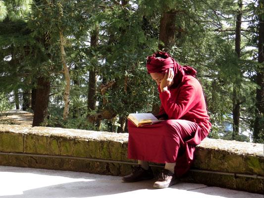 Ich mag die Mönche