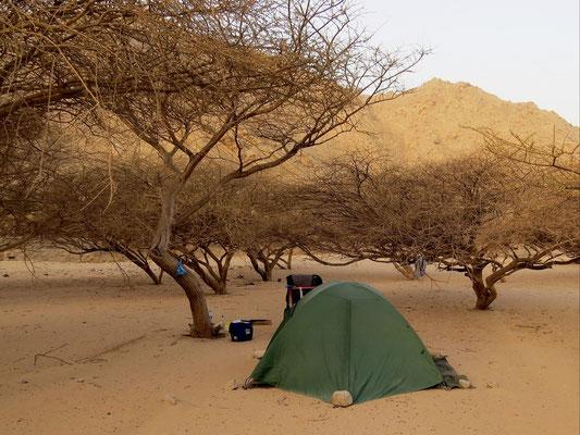 Wadilagerplatz