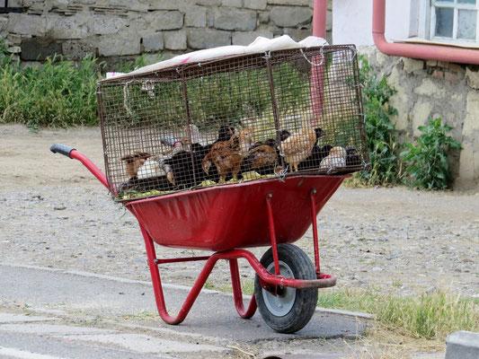 Hühnergfängnis