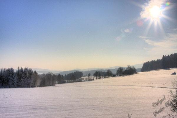 """Der Blick nach Osten beim """"Ebenhof"""""""