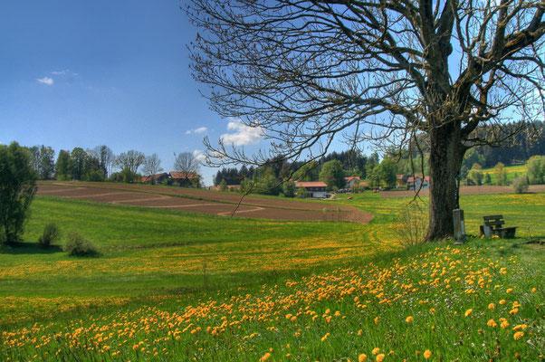 Der Blick nach Rohrbach
