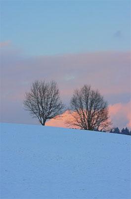 Zweisam am Galgenberg