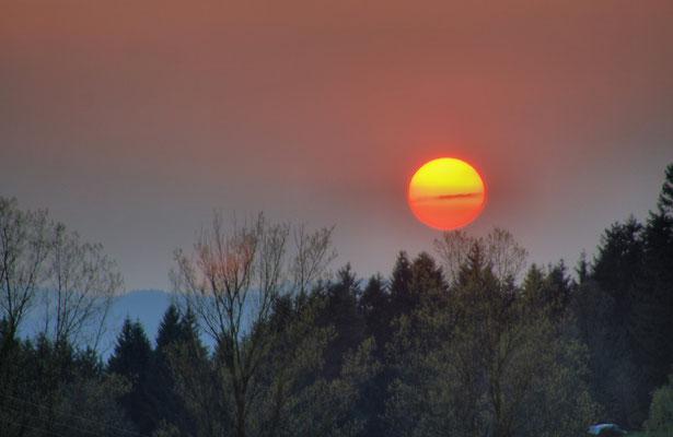 Sonnenuntergang in Schönhöh