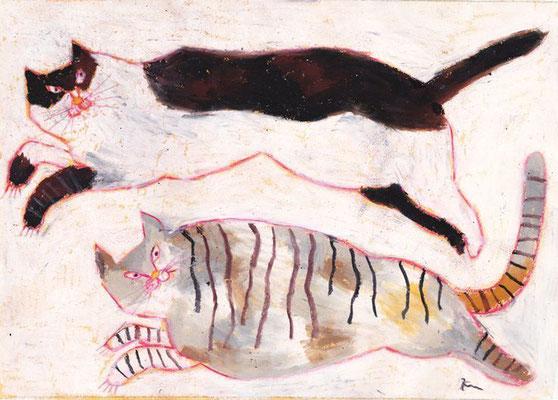 Miroco Machiko: Twee katten
