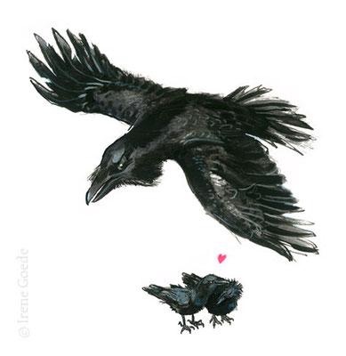 Irene Goede; Raven