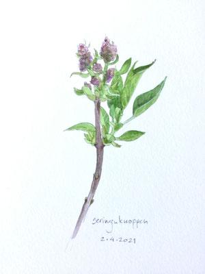 Annette Fienieg: Lilac buds, 2-4-2021