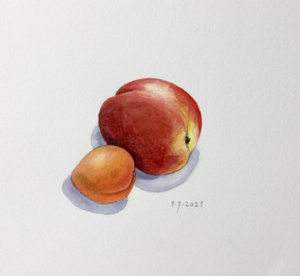 Annette Fienieg: Nectarine and apricot, 1-7-2021