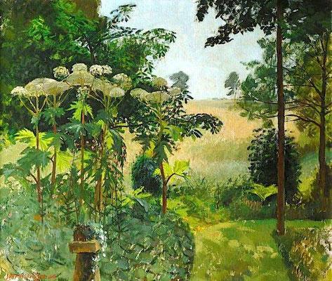 John Aldridge: A shady garden