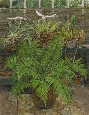 Olwyn Bowey: Wood fern