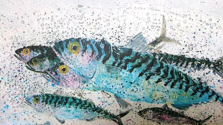 Brian Wildsmith: mackerel
