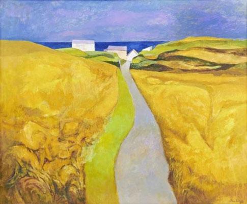John Elwyn: Cardigan Bay