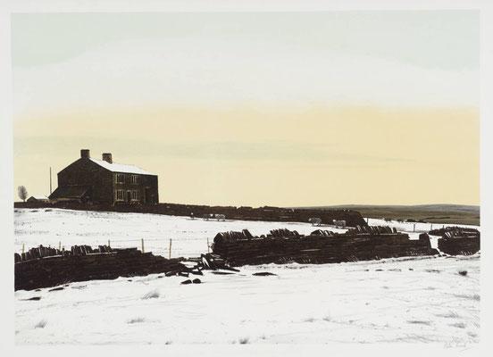 Peter Brook: December, sheep coming in