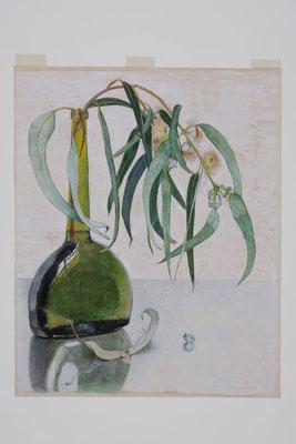 Floris Verster: Eucalyptus