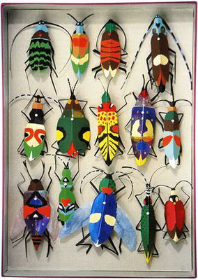 Tilman Michalski: object, beetles
