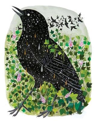 Diana Sudyka: Starlings and Kudzu