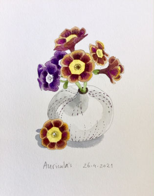 Annette Fienieg: Auricula's, 26-4-2021