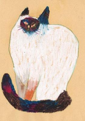 Miroco Machiko: Siamese