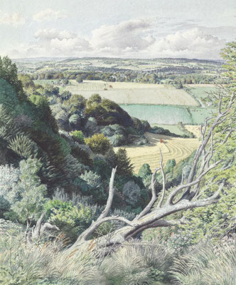 Stanley Roy Badmin: view from a hill