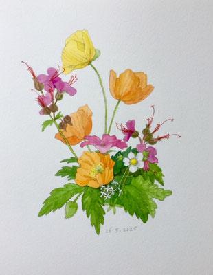 Annette Fienieg: Posy, 26-5-2021