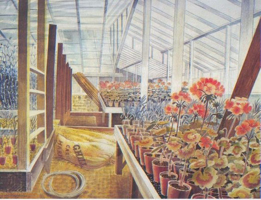 Eric Ravilious: Geraniums and carnations in the greenhouse