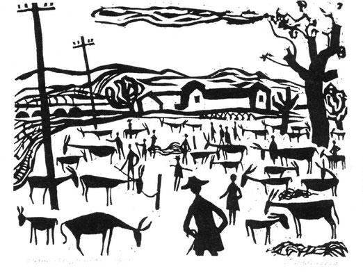 Jenny Dalenoord: Donkey market in Granada