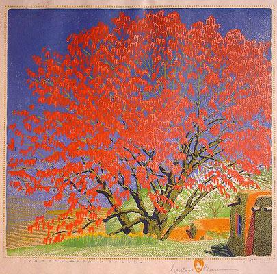 Gustave Baumann: Cottonwood in tassel, houtsnede