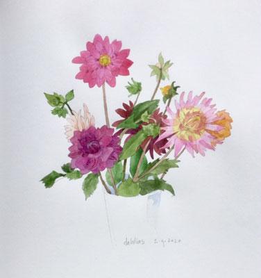 Annette Fienieg: Dahlias