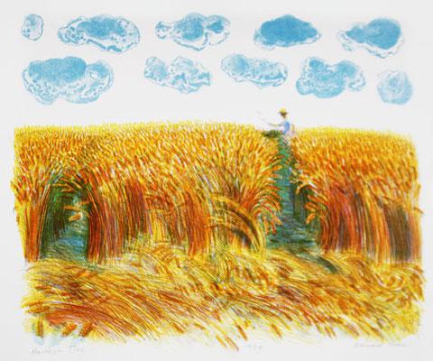 Bernard Cheese: Harvest time