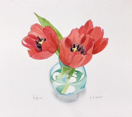 9-3-2021: Tulpen, Annette Fienieg