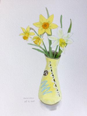 Annette Fienieg: Daffodills, 26-3-2021