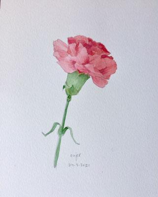 Annette Fienieg: Carnation, 24-3-2021