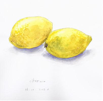 Annette Fienieg: Lemons 16-10-2020