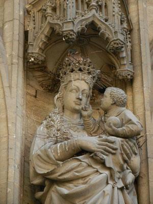 Duif met goddelijke bescherming, St Baafkathedraal