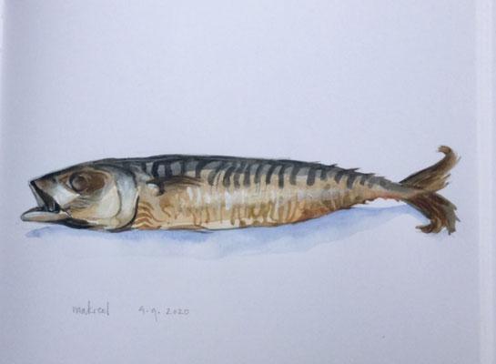 Annette Fienieg: Gerookte makreel
