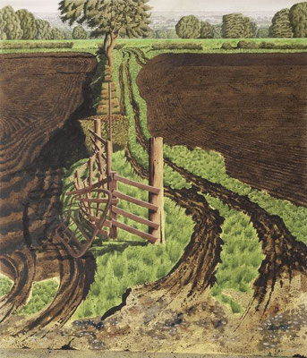 Simon Palmer: Looking to Froggersgill Road
