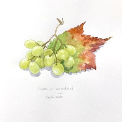 Annette Fienieg: Druiven en wingerdblad, 29-10-2020