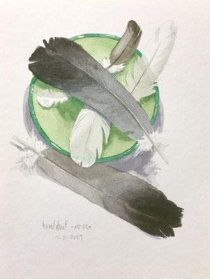 Annette Fienieg: Wood pigeon feathers; 4-5-2021