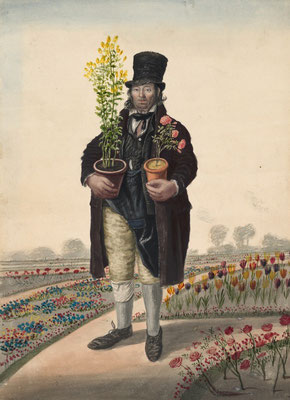 John Dempsey: Copeman, Gardener, Yarmouth