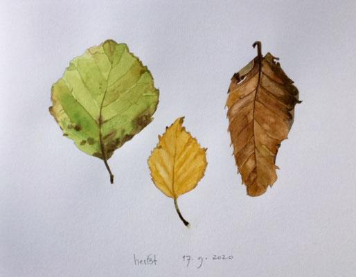 Annette Fienieg: Herfst 17-9-20